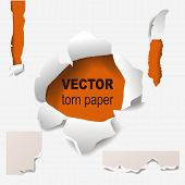 Torn Edges Paper Hole Lacerated Ragged Paper Edge And Crack Realistic 3d Style Vector Illustration C poster