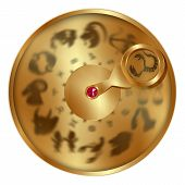 Vector Illustration Gold Disc With Signs Of The Zodiac, Scorpio Separately Allocated. Isolated Objec poster