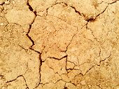 Scorched Earth Background Texture. Photo. Brown. Black poster