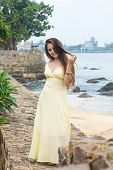 Beautiful Long-haired Woman In A Long Dress On The Beach poster