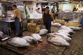 Thunfisch am Tsukiji-Fischmarkt