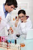 Oenologists analysing different wines
