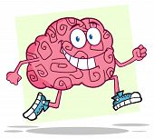 Funcionamiento del cerebro