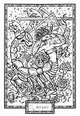Zodiac Sign Scorpio Or Scorpion With Carnation Flower And Lucky Numbers. Hand Drawn Fantasy Graphic  poster