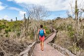 Galapagos Islands tourist exploring wildlife and ecotourism adventure walking on path to Tortuga Bay poster