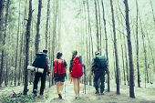 Rear View Of Man And Woman Hikers Trekking A Rocky Path In Forest. Hiker Couple Exploring Nature Wal poster