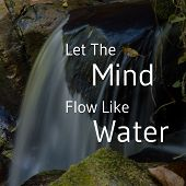 Inspirational And Motivational Quote. Let The Mind Flow Like Water. Cascade Background. poster