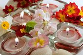 Scented Candles And Flowers