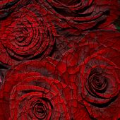 Abstract Grunge Textured Background With Red Roses