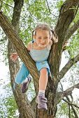 Girl Is Climbing On A Tree