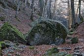 Autumn View Toward The Labyrinth Of The Teteven Balkan With High Peaks, Glade, Two Mossy Big Stones  poster