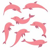 Pink Dolphin. Collection Of Colorful Icons On White Background. Vector Cartoon Illustration. Marine  poster