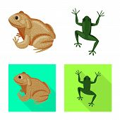 Isolated Object Of Wildlife And Bog Symbol. Collection Of Wildlife And Reptile Stock Vector Illustra poster