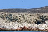 foto of ica  - The Ballestas Islands are a group of small islands near the town of Paracas located within the Paracas District of the Pisco Province in the Ica Region - JPG