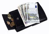 Euro Bills Incl. Cents