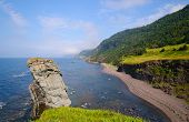 Remote Sea Shore In Newfoundland