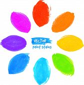Rainbow colors vector marker stains flower