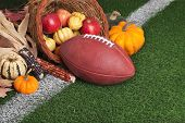 foto of cornucopia  - A football with a cornucopia on a grass field with white stripe - JPG