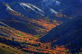stock photo of blanket snow  - Autumn fall colors in the mountains with first blanket of snow at the top - JPG
