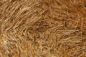 structure of straw