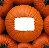 Pumpkin Blank Sign