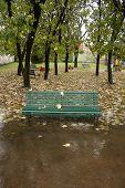 Bench Under Rain