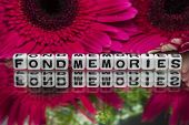 Fond Memories Text With Flowers