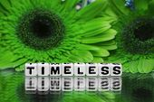 Timeless Text Message With Green Flowers