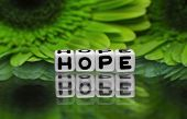 Hope Text With Green Flowers