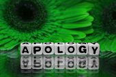 stock photo of apologize  - Apology with green flowers in the background - JPG
