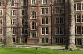 Garden of Lincolns Inn,  London