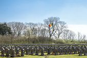 stock photo of world war one  - cemetery belgian soldiers world war one de panne - JPG