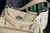 Beige Handbag For Women