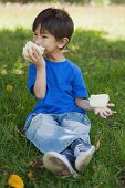 Full length of a relaxed little boy eating cotton candy at the park