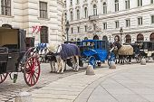 Vienna, Austria. The Vienna fiacres expect tourists