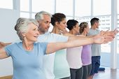 pic of senior class  - Portrait of fitness class stretching hands in row at yoga class - JPG