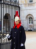 Horse Guards Soldier