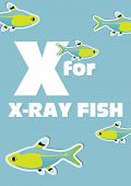 X For The X-ray Fish, An Animal Alphabet For The Kids