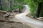stock photo of deforestation  - yellow bulldozer stacking trees in woods deforesting - JPG