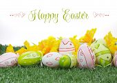 foto of daffodils  - Happy Easter colorful pink and green Easter Eggs with yellow daffodils on green grass against white background with sample text or copy space - JPG