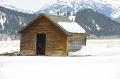 Nice Image of a abandoned Shed in Yellowstone