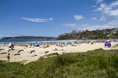 Freshwater, Sydney,australia-december 27Th 2013: The Beach On A Sunny Day. Freshwater Is One Of The