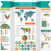 pic of animal husbandry  - Agriculture animal husbandry infographics Vector illustrationstry info graphics - JPG