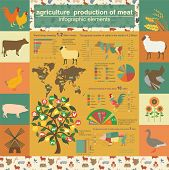Agriculture, Animal Husbandry Infographics, Vector Illustrationstry Info Graphics