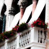 Balcony With Flower On An Ancient Venetian Palace