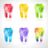 Polygonal vector set of teeth.