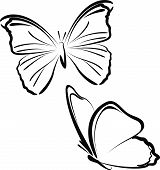 foto of insect  - Simple vector illustration of  butterflies - JPG