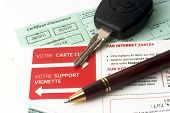 Auto Insurance Organizes