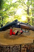 stock photo of hunt-shotgun  - shotgun and its cartridges - JPG
