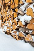 pic of firewood  - Firewood background  - JPG